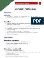 Disc Visual Fundamentacion