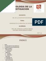 Protocolo de Investigacion Obesidad Nuevo