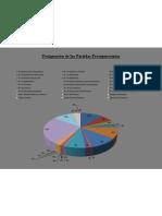 Designacion de Las Partidas Presupuestarias