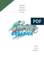 quimica organica carina