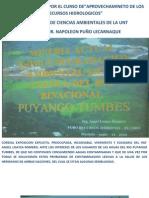 Contaminacion Cuenca Alta Rio Puyango Tumbes[1]