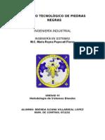 6 Unidad Metodologia de Sistemas Blandos