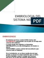 Embriología del Sistema Nervioso