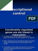 Lect3 Transcriptional Control
