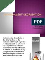 Environment Degradation