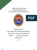 Informe de Procesamiento de Minerales