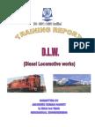 54456974 Summer Traning DLW Report