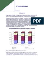 Características gas natural