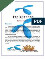 Telenor 2003