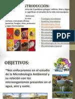 microbiologia AMBIENTAL PRECENTACION