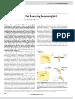 Aerodynamics of the Hovering Hummingbird
