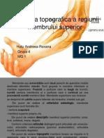 Anatomia Topografica a Membr Sup