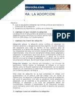 guia de estudio adopcion
