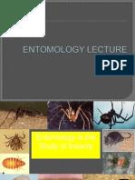 Entomology Lecture