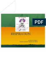 Respiration (Pttht)