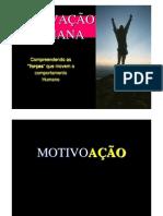 01 AULA 09 MOTIVAÇAO