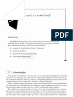 CAP03-CUSTEIO VARIAVEL