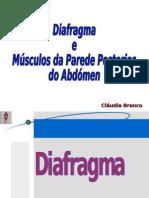 Anatomia diafragma  músc. parede posterior-C.B.