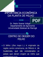 NOVÍSSIMA VERSÃO DE IMPORTÃNCIA ECONÕMICA DO MILHO