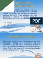 Mi Diapositiva Del Ionomero