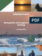 Monografia Arheologica a Localitatii Liebling Compendiu