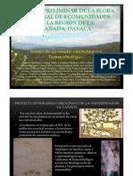 Estudio Preliminar de La Flora Medicinalx