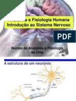 1 - Introdução ao Sistema Nervoso