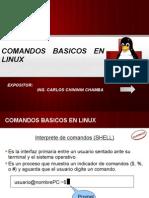 Comandos Basicos Linux