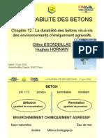 Ch12 La Durabilite Des Betons Vis-A-Vis Des Environnements Chimiquement Agressifs