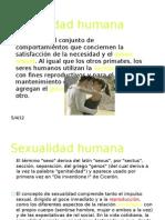 Sexual Id Ad Humana Realciones Humanas