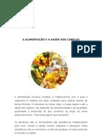 1204847845 a Alimentacao e a Saude Dos Cabelos[1]