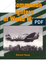 Aviation Air Commando Fighters of World War 2 USAAF