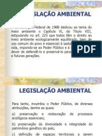 Aula Dra. Amélia - Legislação Ambiental