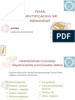 identifcaciondesalmonellas-100202124943-phpapp01