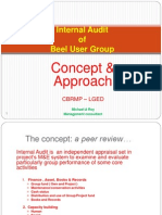 Internal Audit BUG 2011