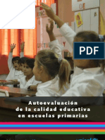 IACE_Primaria_2011