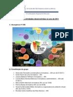 NTE_relatorio2011