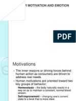 Consumer Motivation & Emotion_2
