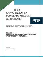 MNCO-08 Planificacion de a CO-PA en SAP