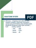 ANATOMI NYERI