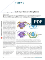 Testing the Glutamate Hypothesis of Schizophrenia