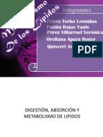 Metabolismo de Lipidos Copia