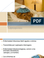 Leptospirosis Ppt.