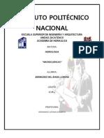 INSTITUTO POLITÉCNICO NACIONA1