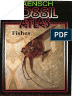 Fossil Atlas Fishes