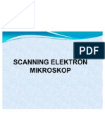 Scanning Elektron Mikroskop