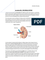 Lecture Notes #22 renal system