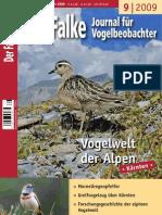 DerFalke2009_09