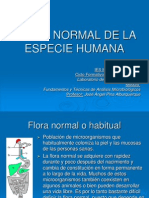 F_NORMAL