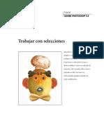 Manual de Adobe Photoshop 5.0